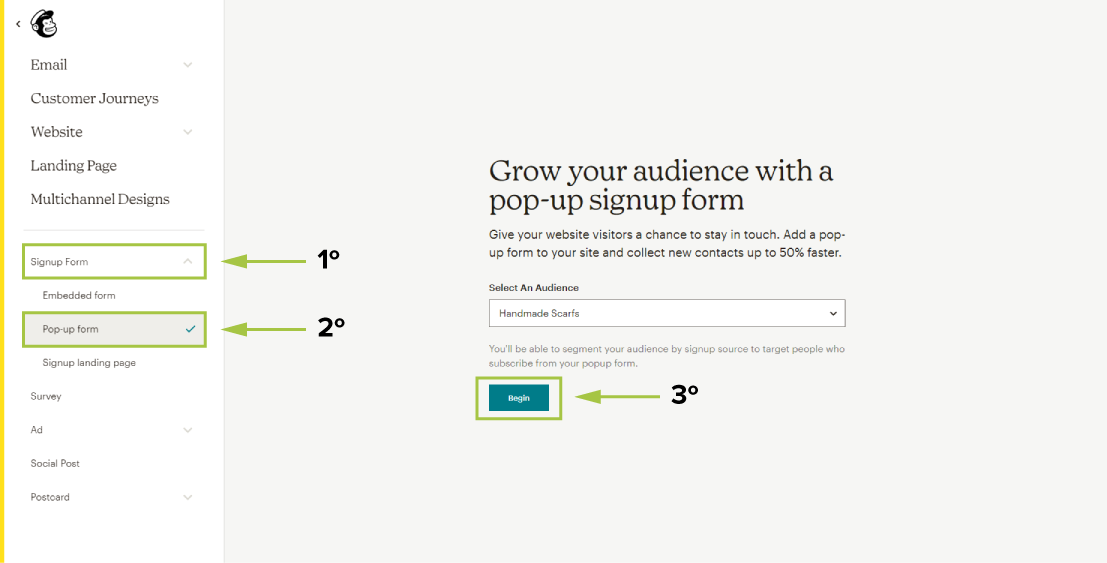 select audience popup form
